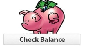 Gift Card Balance Checker